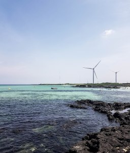 Korea Travels: My Jeju Summer Experience